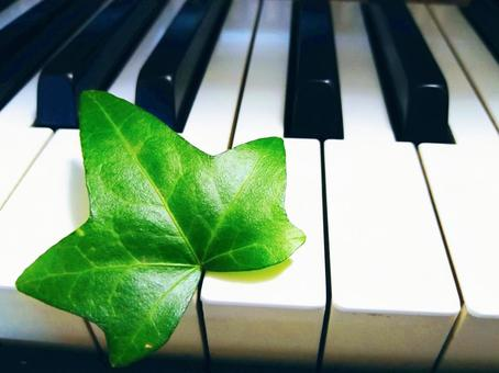 Piano keyboard and leaves