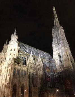 照明的聖史蒂芬大教堂,維也納,奧地利。
