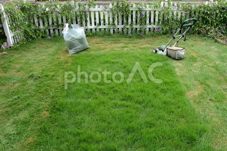 芝生の手入れ(芝刈り)25の写真