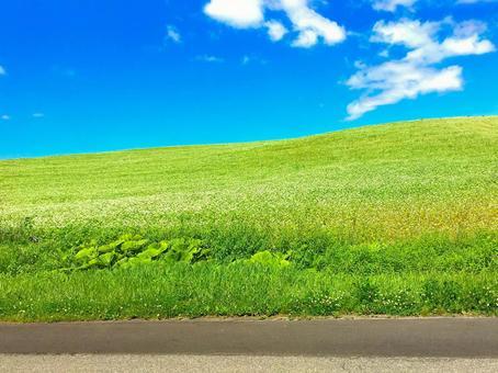 Hokkaido sky and grasslands