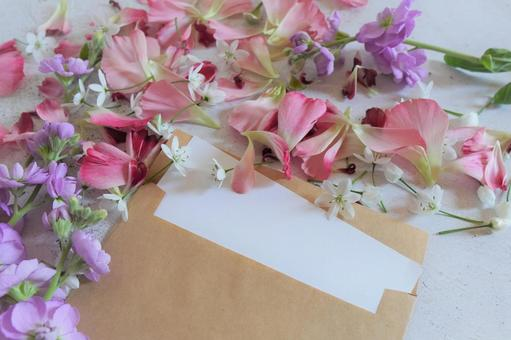 [Image background] Letters and spring flowers a