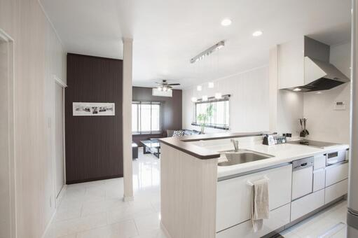 Kitchen / Dining / Living