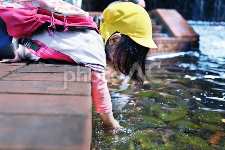 こども_遠足 川の写真