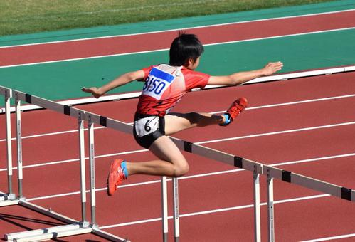 Hurdle competition