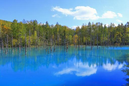 Blue pond and autumn leaves 3