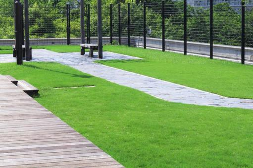 Lawn and wood deck