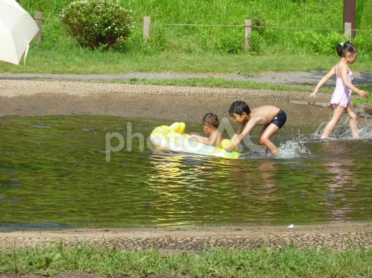 夏の小川で遊ぶ子どもの写真