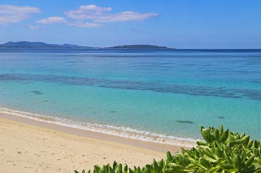 오키나와의 아름다운 바다