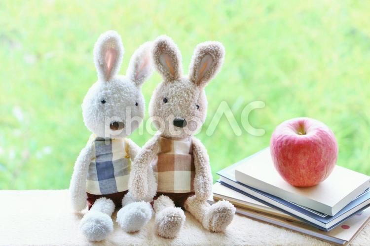なかよしウサギの写真