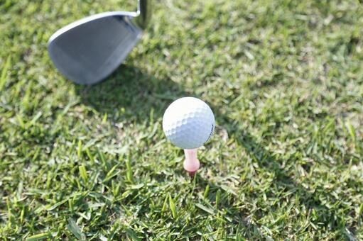Grass club and golf ball 22