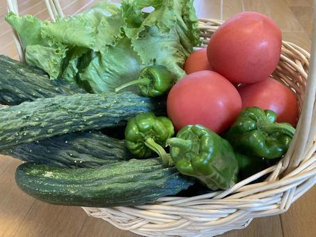 Assorted summer vegetables