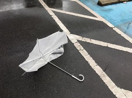 깨진 우산