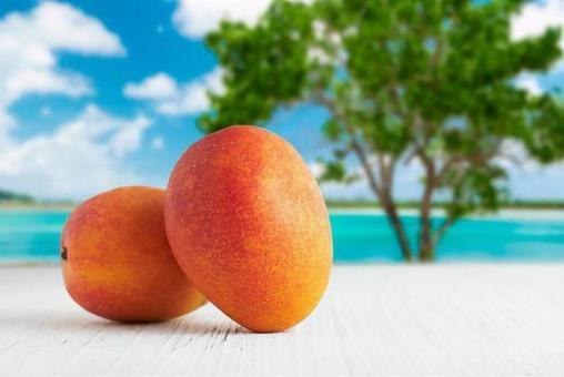 Mango on blue sea background