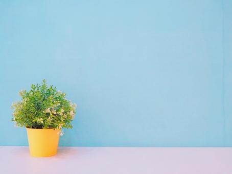 Light blue wallpaper and interior goods