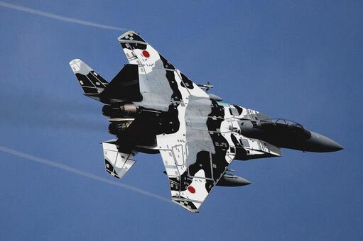 </s> 闘 machine F-15DJ