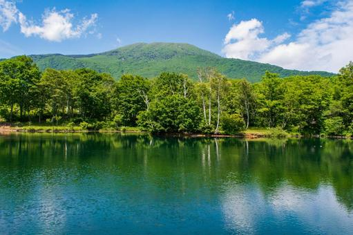 Shimizugaike Pond (Sasagamine Plateau, Myoko City)