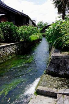 시가현 다카시 마시 하리 생수의 고향