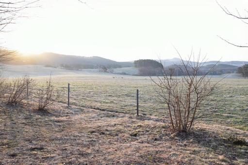 Asahi Ranch Meadow