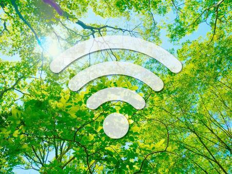 WiFi 아이콘 (녹색)