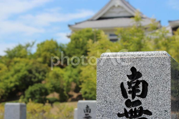 墓参りの写真