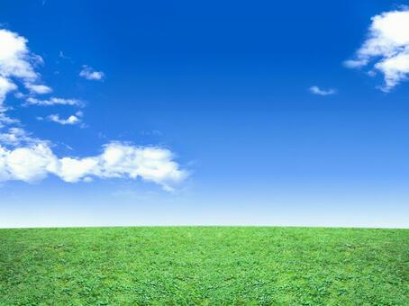 Refreshing blue sky and green meadow 06
