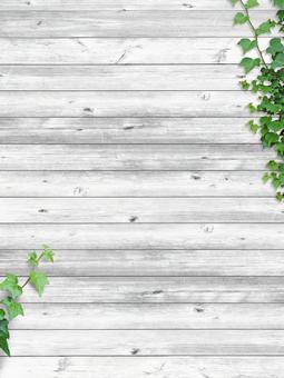 텍스처 [아이비와 흰 나무 벽 02]