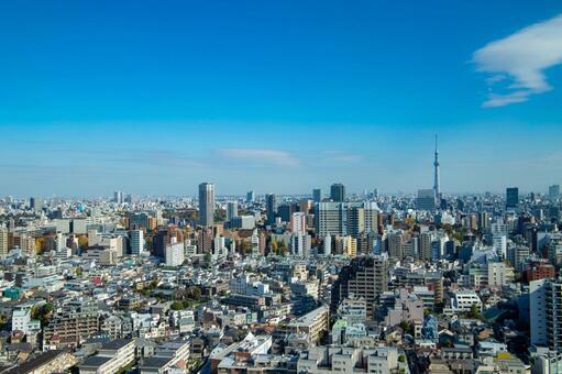 도쿄의 거리를 전망 스카이 트리