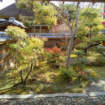 생생한 일본 정원