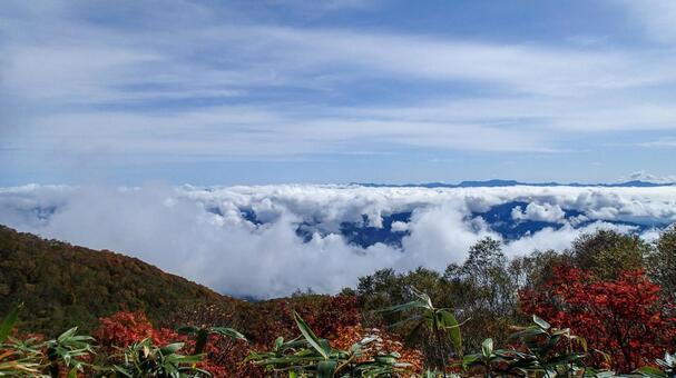 Sea of clouds seen from Mt. Myoko Mt. Myoko