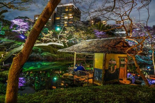 Image of spring Japanese garden