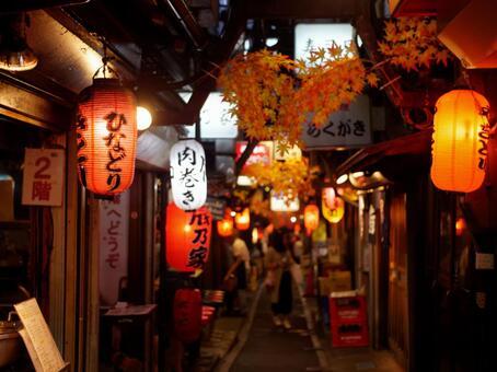 "Shinjuku bar ""Omoide Yokocho"""