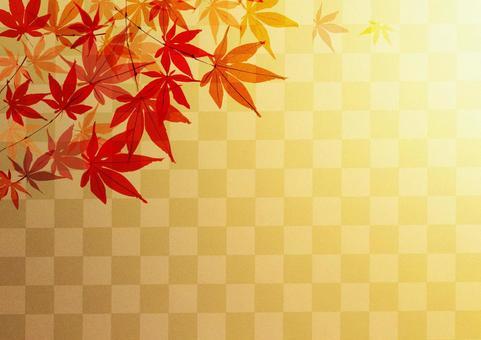 Autumn leaves _ lattice _ background
