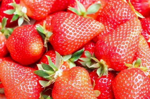 먹음직스러운 딸기