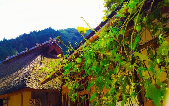 Aozora, theater roof, roofing old residence house countryside
