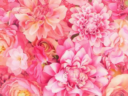 背景(粉紅色的花朵,蓬鬆的)