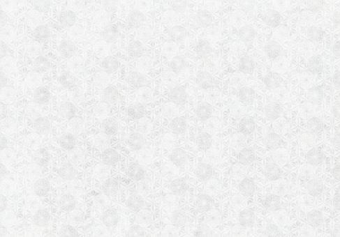 Background_Back_Texture_611_Washi_White