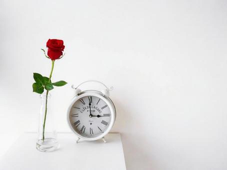 與花共存 一朵鮮紅的玫瑰