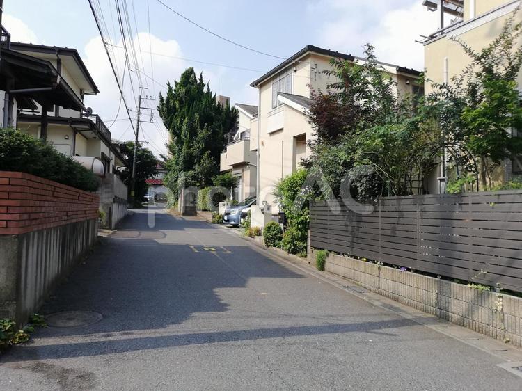 夏の路地の写真