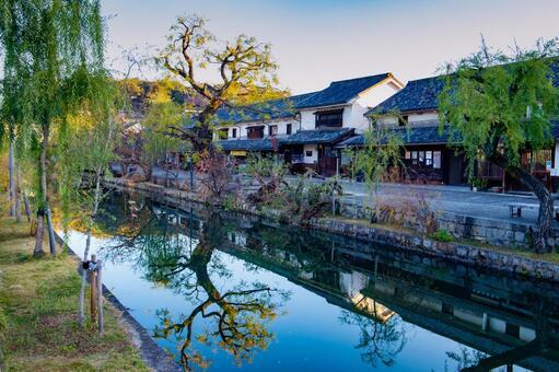 쿠라 시키 미관 지구 倉敷川에 비치는 나무