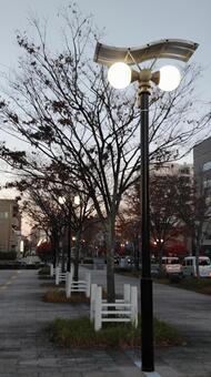 Evening street lamp and autumn tree