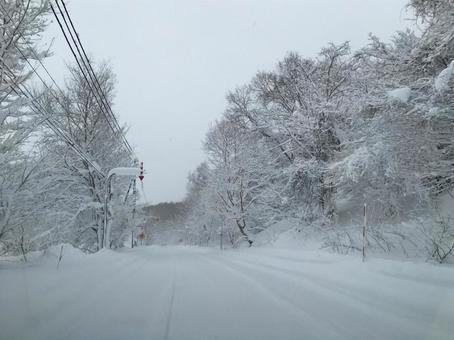 北海道在冬季
