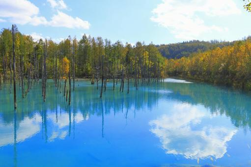 Blue pond and autumn leaves 4