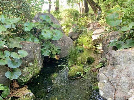 日本花園中的河