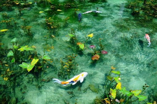 이름도없는 연못