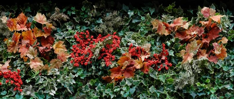 Flower Arrangement · Christmas image