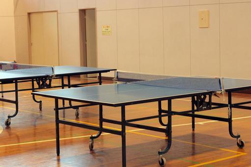 乒乓球桌和健身房