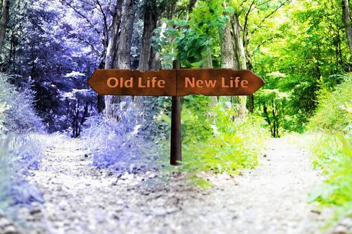 갈림길 4 NewLife-OldLife