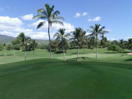 Resort golf in Hawaii in Tropical country