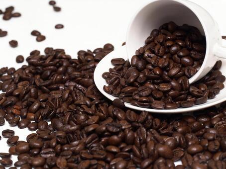 커피 콩 6