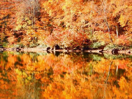 Myoko series (Autumn colored Sennin pond)